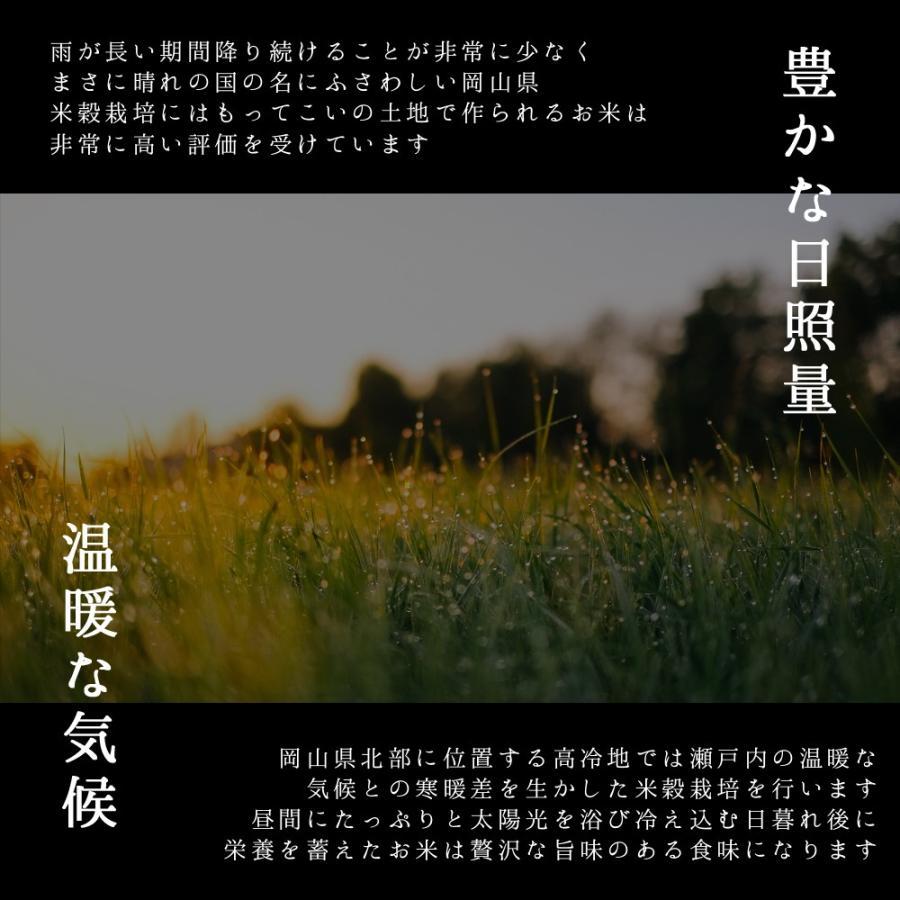 米 令和3年 新米 岡山県産 特A米 きぬむすめ 5kg 1袋 お米 キヌムスメ 5キロ 一等米 送料無料 安い|yamamotoyasuosaketen|04