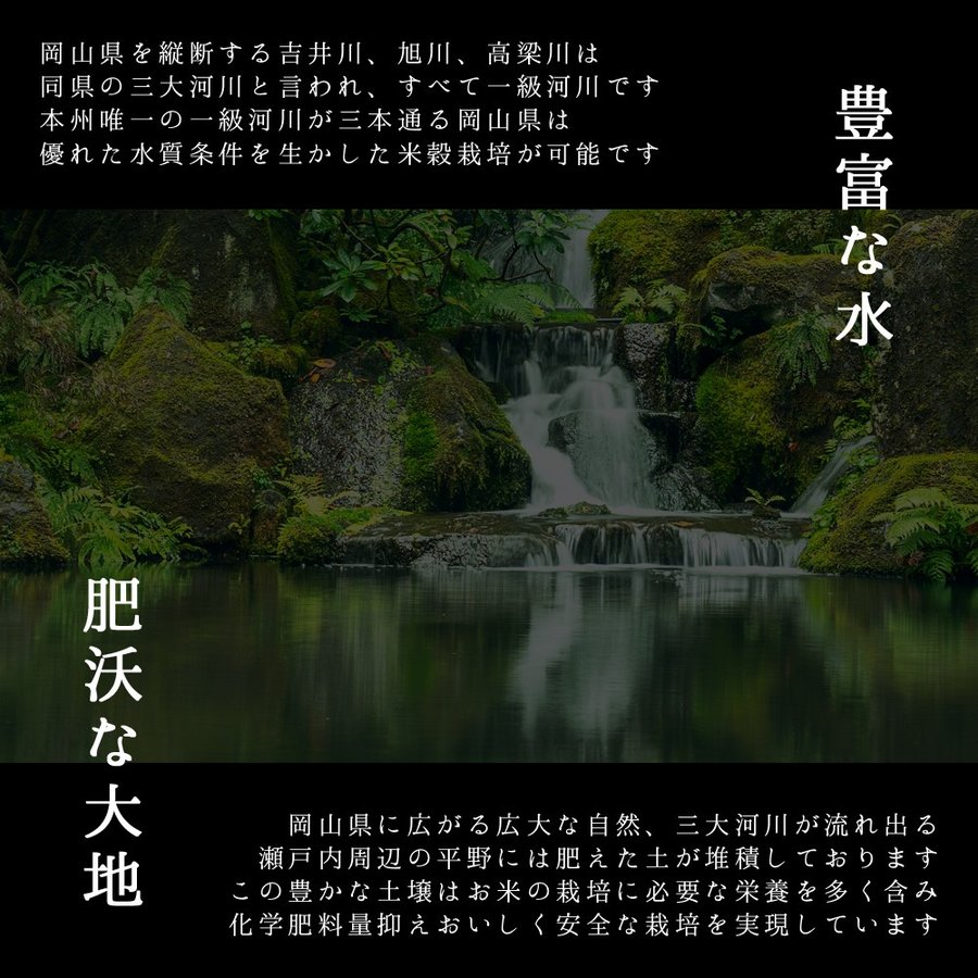 米 令和3年 新米 岡山県産 特A米 きぬむすめ 5kg 1袋 お米 キヌムスメ 5キロ 一等米 送料無料 安い|yamamotoyasuosaketen|05