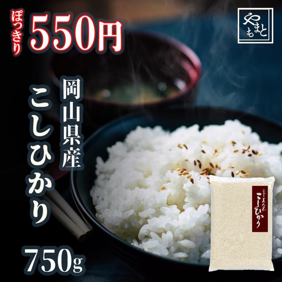 米 令和3年 新米 岡山県産こしひかり750g ポイント消化 ぽっきり 安い お試し 送料無料 コシヒカリ 一等米 yamamotoyasuosaketen