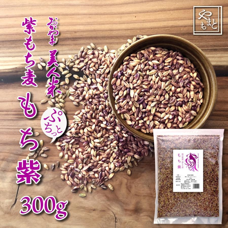 雑穀 雑穀米 米 令和2年 岡山県産 紫もち麦(ダイシモチ) もち紫 300g 送料無用 安い お試し ポイント消化 ぽっきり メール便|yamamotoyasuosaketen