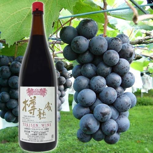 ワイン 赤ワイン TEKISEN WINE 赤 樽熟成 マスカットベリーA 1800ml 一升瓶のワイン 山梨醗酵工業 ミディアムボディ|yamanashiwine|04