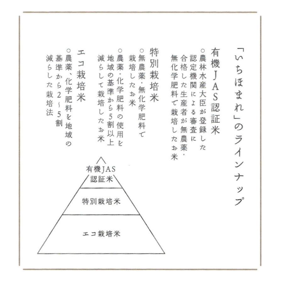 お米5kg  福井県産 いちほまれ 令和2年産 玄米5kg×1袋 選べる精米|yamasina|04