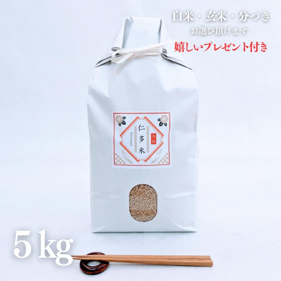 お米 5kg 奥出雲仁多米 コシヒカリ  令和2年産 玄米5kg×1袋 選べる精米 yamasina