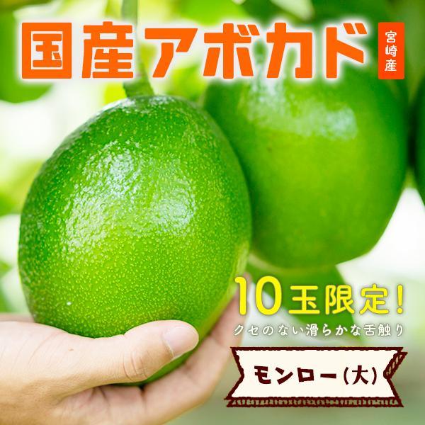【10玉限定!】「モンロー(国産アボカド)大サイズ1玉」ギフト箱入り|yao800