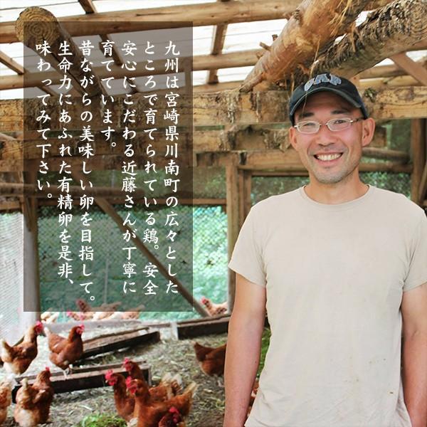 【有精卵】近藤自然農園の卵【10個入】|yao800|02