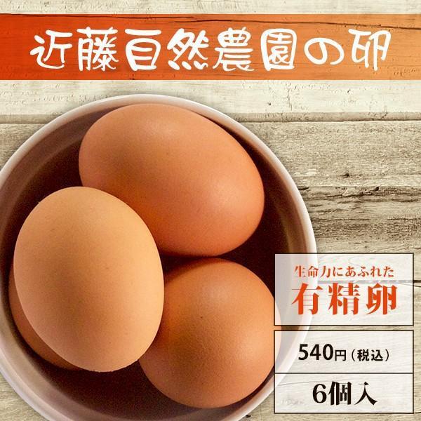 【有精卵】近藤自然農園の卵【6個入】 yao800