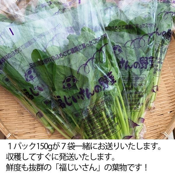 福じいさんの野菜【小松菜】宮崎県綾町産小松菜 150g*7袋 yao800