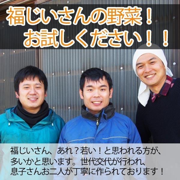 福じいさんの野菜【水菜】宮崎県綾町産水菜 150g*7袋|yao800|04