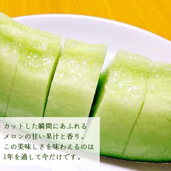 熊本県産メロン 肥後グリーン 1玉 予約販売 送料無料 ギフト プレゼント 贈答品  父の日 お中元|yao800|02