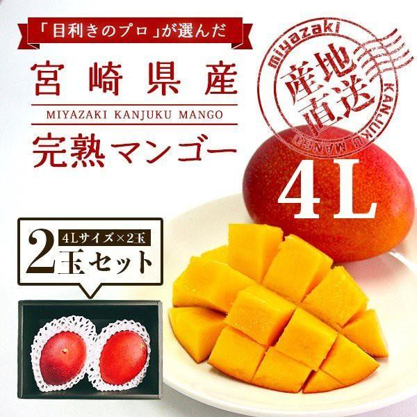 宮崎完熟マンゴー 2個セット 4Lサイズ ギフト プレゼント 贈答品 母の日、父の日 yao800