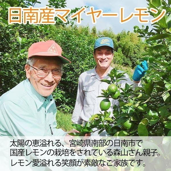 国産レモン【2kg】 日南産マイヤーレモン直径4cm以上 ※ノーワックス|yao800|02