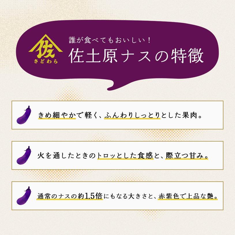 宮崎県特産品【佐土原茄子】佐土原茄子10本|yao800|02