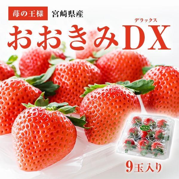 【イチゴの王様】おおきみDX(9玉サイズ)|yao800
