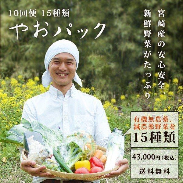 野菜セット やおパック 10回便 15種類 毎週または隔週お届け 送料無料 yao800