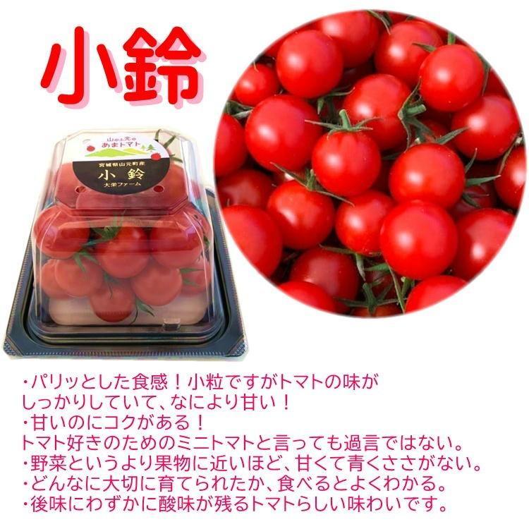 あまとまと トマト 130g×3p 甘い まるでフルーツ! 完熟 ミニ プチ 宮城 山元町 野菜 ソムリエサミット 受賞 ギフト お祝い 送料無料 yappari 05