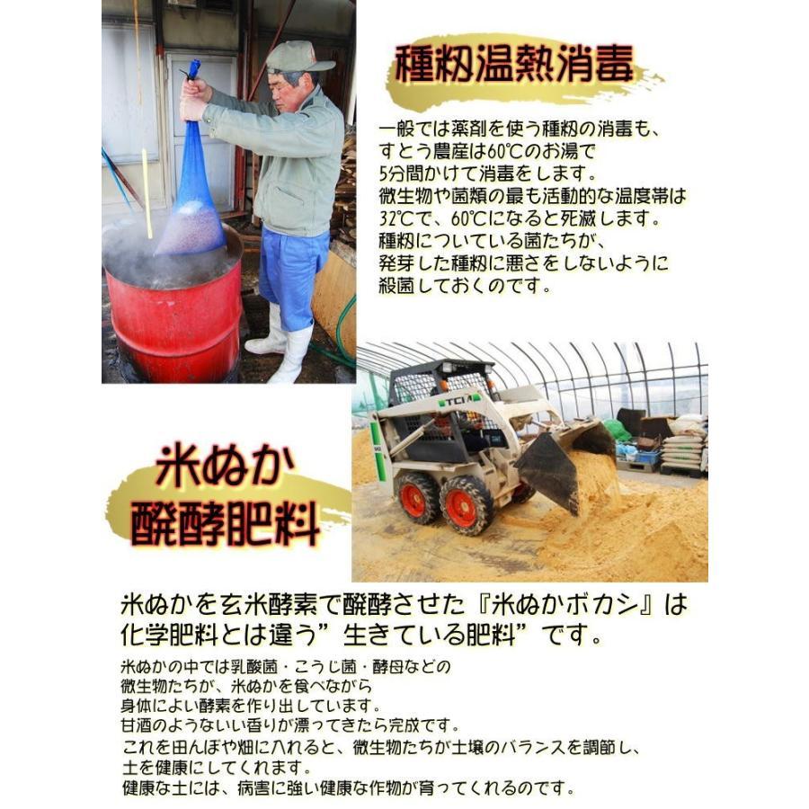 会津 合鴨農法 コシヒカリ 10kg 白米 令和2年産 新米  福島 お米 あいがも 送料無料 無農薬|yappari|04