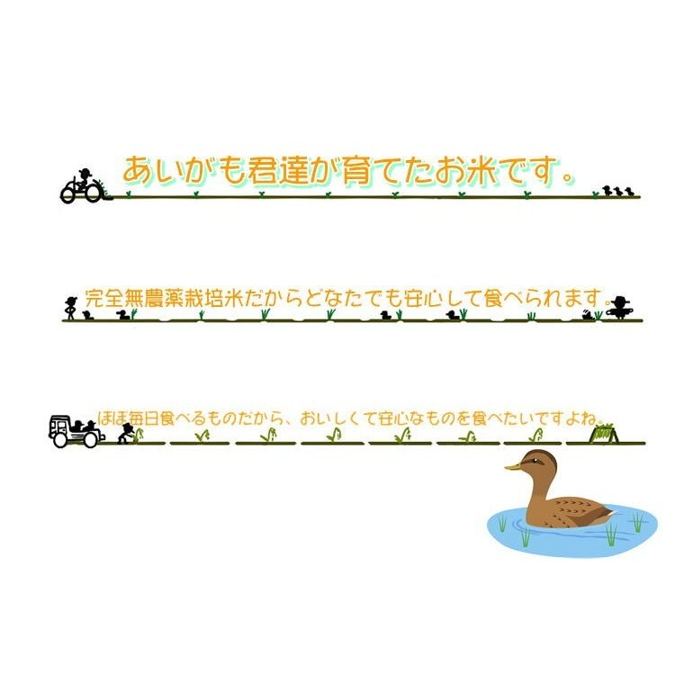 会津 合鴨農法 コシヒカリ 10kg 白米 令和2年産 新米  福島 お米 あいがも 送料無料 無農薬|yappari|06