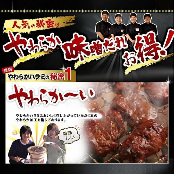 焼肉セット 焼き肉 焼肉用 肉 やわらか ハラミ 味噌だれ漬け メガ盛りセット 1kg 送料無料 バーベキューセット BBQ 食品 牛肉 お肉 yhjonetsu 05