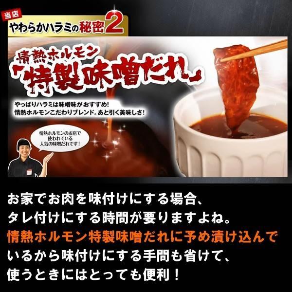 焼肉セット 焼き肉 焼肉用 肉 やわらか ハラミ 味噌だれ漬け メガ盛りセット 1kg 送料無料 バーベキューセット BBQ 食品 牛肉 お肉 yhjonetsu 06