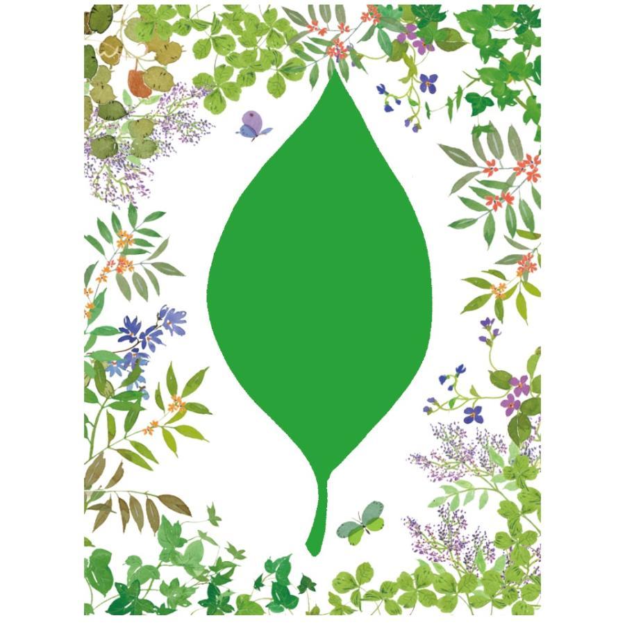 緑(green)の妖精|ym-trebol|03