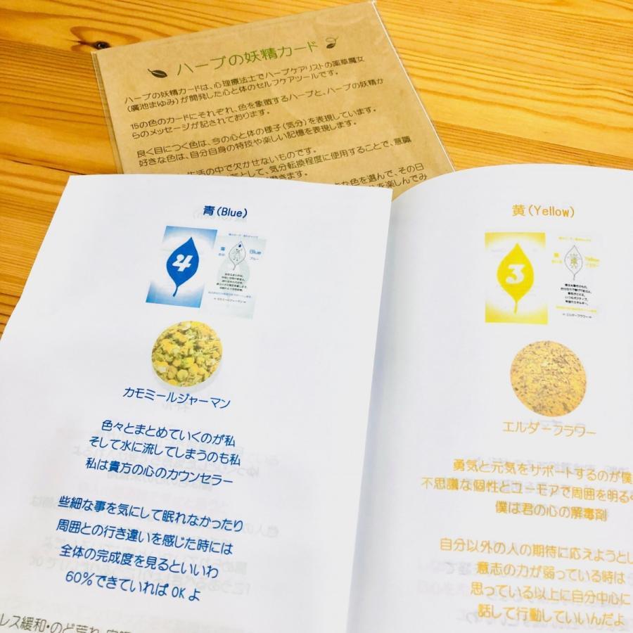 ハーブの妖精カード ym-trebol 02