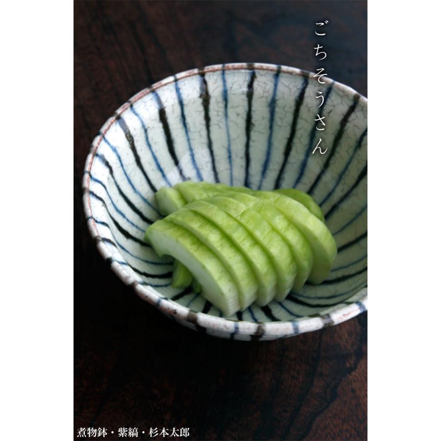煮物鉢・紫縞・ 杉本太郎《中鉢・15.5cm》|yobi|06