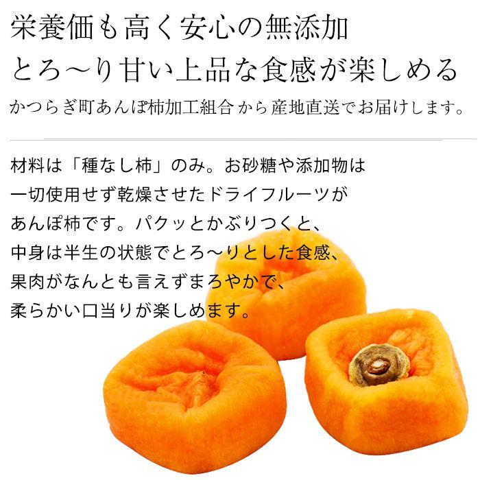 ぽ 柿 栄養 あん