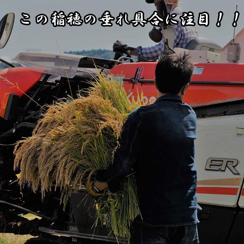 新米 令和2年産 ひとめぼれ 玄米 5kg 特別栽培米 山形県産 庄内産 農家直送 米 お米|yogorou|11