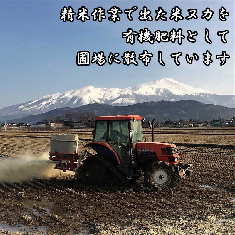 新米 令和2年産 ひとめぼれ 玄米 5kg 特別栽培米 山形県産 庄内産 農家直送 米 お米|yogorou|12