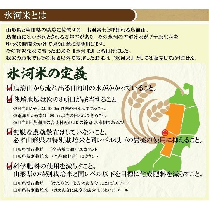 新米 令和2年産 ひとめぼれ 玄米 5kg 特別栽培米 山形県産 庄内産 農家直送 米 お米|yogorou|13
