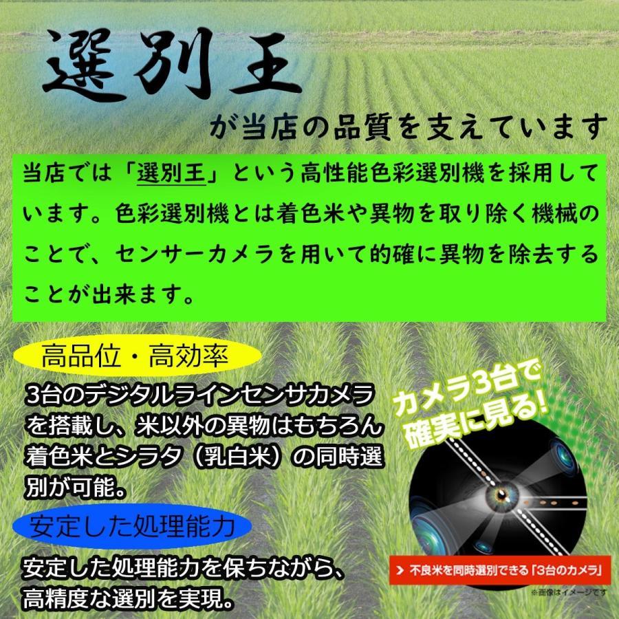 新米 令和2年産 ひとめぼれ 玄米 5kg 特別栽培米 山形県産 庄内産 農家直送 米 お米|yogorou|14