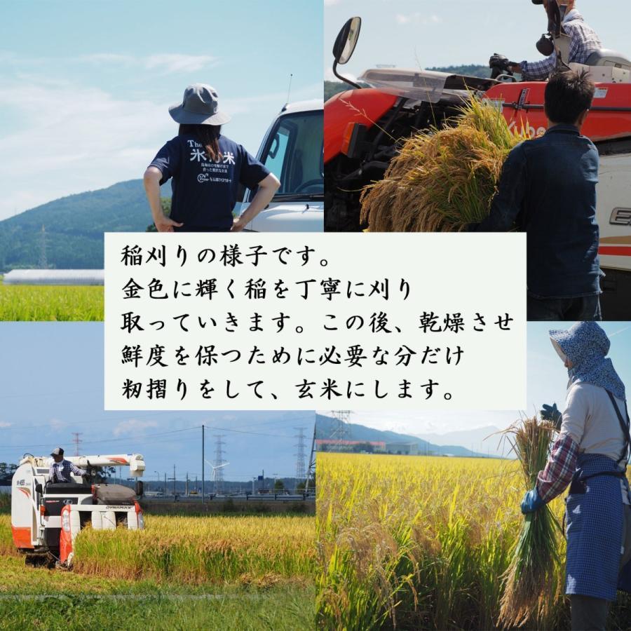 新米 令和2年産 ひとめぼれ 玄米 5kg 特別栽培米 山形県産 庄内産 農家直送 米 お米|yogorou|17