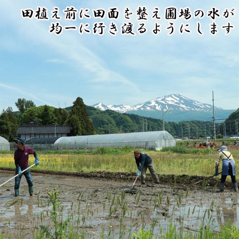 新米 令和2年産 ひとめぼれ 玄米 5kg 特別栽培米 山形県産 庄内産 農家直送 米 お米|yogorou|05