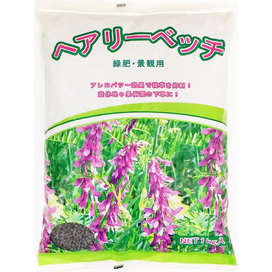 ヘアリーベッチ 1kg 緑肥・景観・ハチミツ取りに 緑肥の種 yohonsha-japan