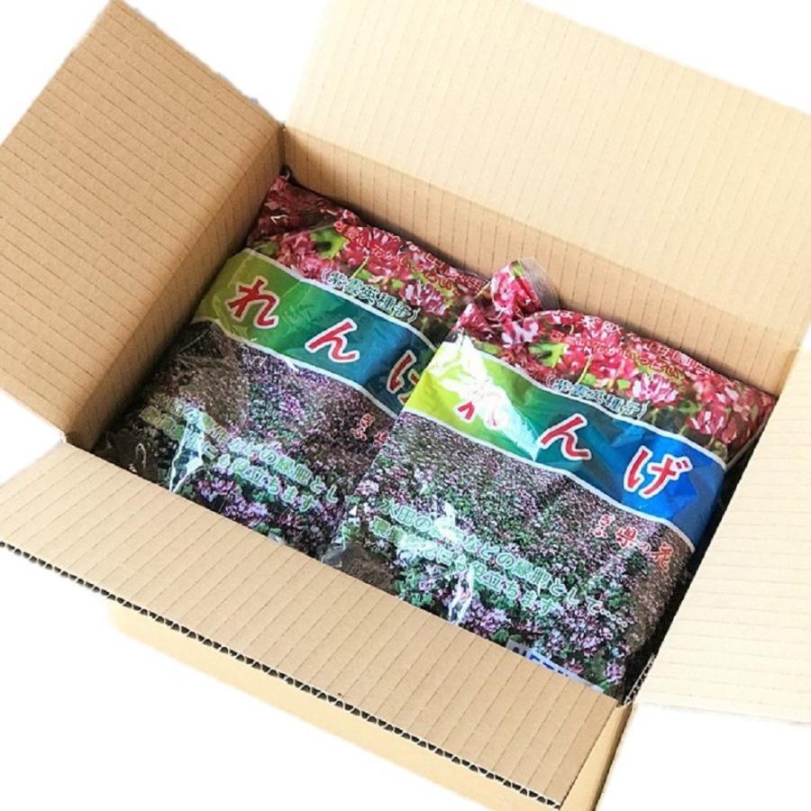【2021年産】レンゲ種子 10kg 送料無料 緑肥の種 yohonsha-japan