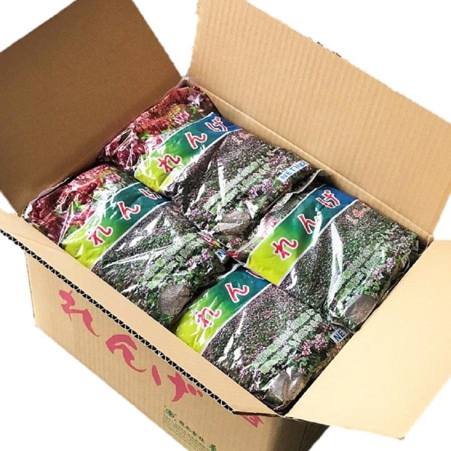 【2021年産】レンゲ種子 20kg 送料無料 緑肥の種 yohonsha-japan