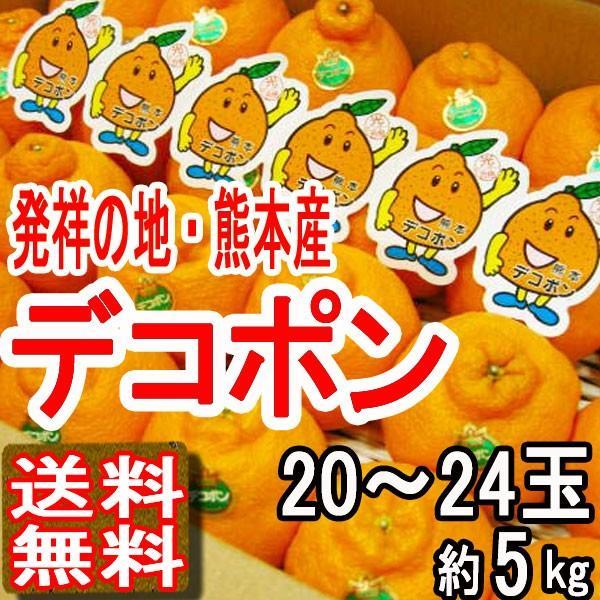 ja熊本果実連 デコポン 5kg 20〜24玉 JA熊本果実連 かんきつ類 贈答用 送料無料 訳あり品ではございません yoimono-bank-store