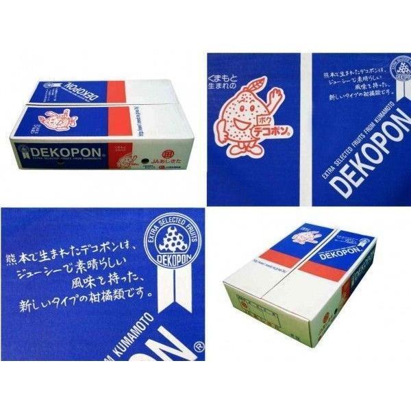 ja熊本果実連 デコポン 5kg 20〜24玉 JA熊本果実連 かんきつ類 贈答用 送料無料 訳あり品ではございません yoimono-bank-store 04