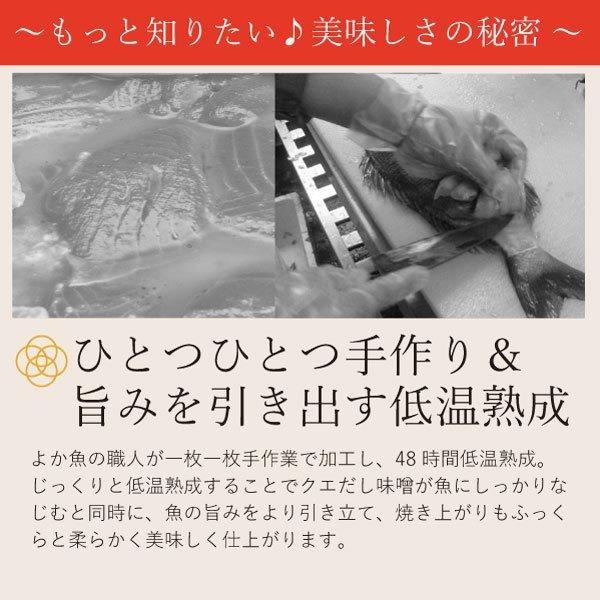【ただいま旬の地魚増量中!】クエだし味噌漬け5種食べ比べセット(胡椒鯛・ナベ鯛・旬の魚3種)|yokasakana|18