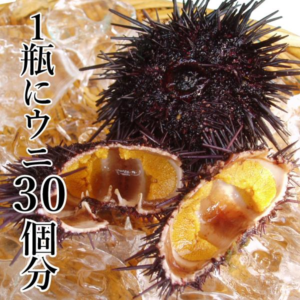 食べれば納得絶品純粋塩うに (ムラサキウニ) 1本 70g|yokasakana|02