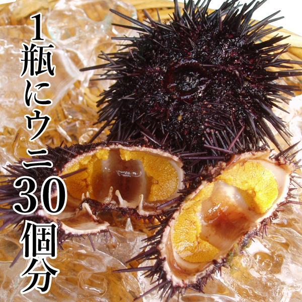 食べれば納得絶品純粋塩うに 2本詰め合わせ (ムラサキウニ)  ギフト 1本 70g|yokasakana|02