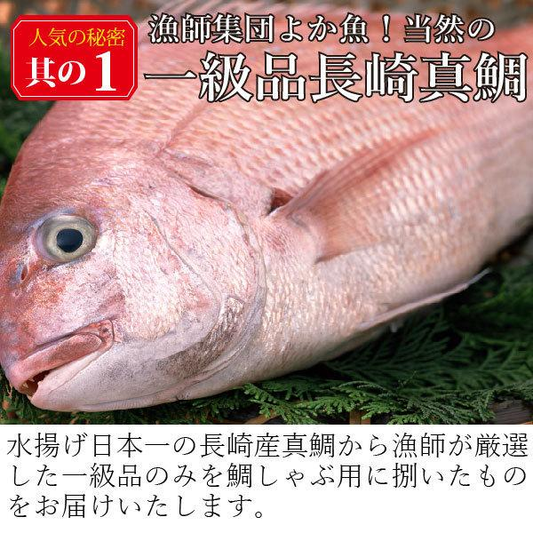 ギフト しゃぶしゃぶ 九十九島よか鯛しゃぶ詰合せ 3〜4人前 [送料無料] 真鯛|yokasakana|12