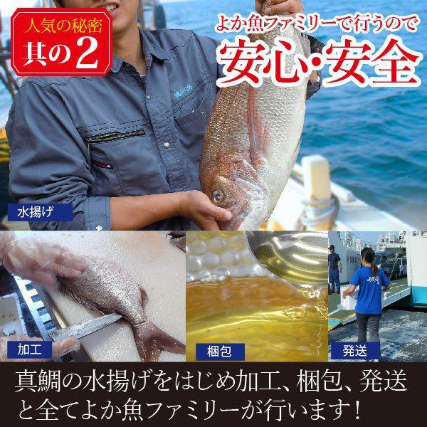 ギフト しゃぶしゃぶ 九十九島よか鯛しゃぶ詰合せ 3〜4人前 [送料無料] 真鯛|yokasakana|13