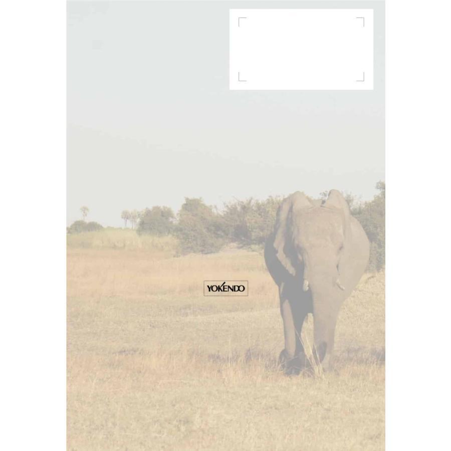 動物園動物のウェルフェア Zoo Animal Welfare、Terry Maple, Bonnie M Perdue 著、岩野俊郎 訳 yokendo 02