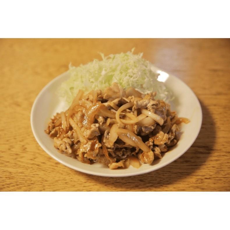 焼肉のたれ金 236g|yokohama-takeishoten|04