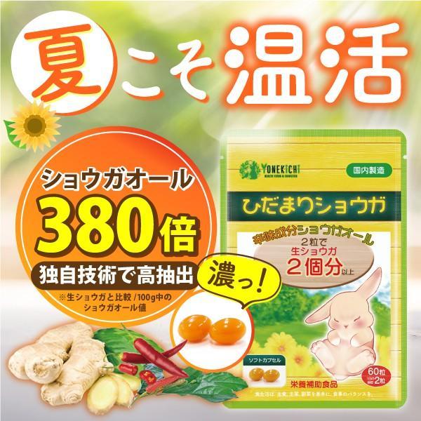 温活 冷え サプリ ひだまりショウガ 冷え対策 ショウガオール ショウガ サプリ60粒30日分 yonekichi