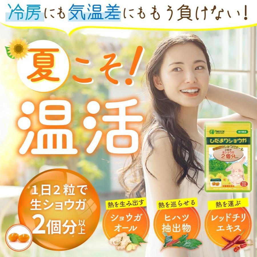 温活 冷え サプリ ひだまりショウガ 冷え対策 ショウガオール ショウガ サプリ60粒30日分 yonekichi 02