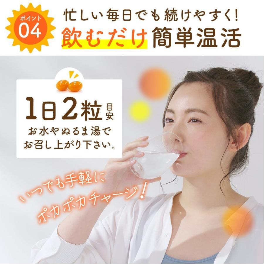 温活 冷え サプリ ひだまりショウガ 冷え対策 ショウガオール ショウガ サプリ60粒30日分 yonekichi 11