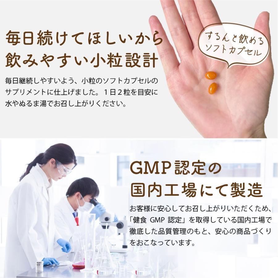 温活 冷え サプリ ひだまりショウガ 冷え対策 ショウガオール ショウガ サプリ60粒30日分 yonekichi 12