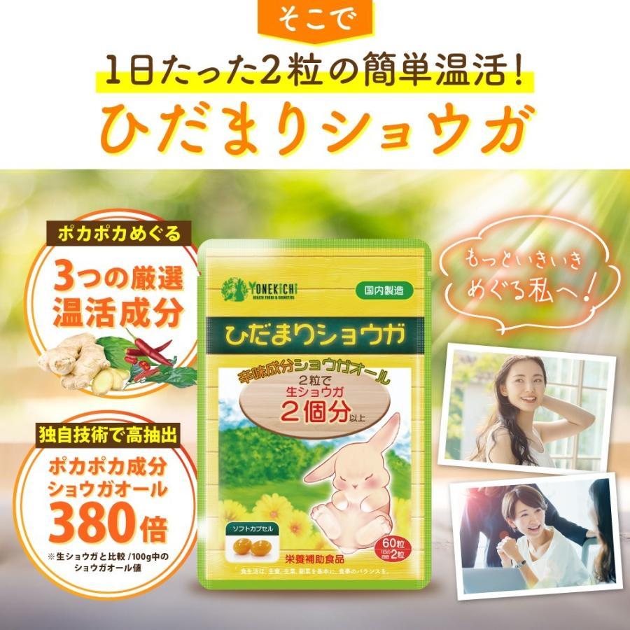 温活 冷え サプリ ひだまりショウガ 冷え対策 ショウガオール ショウガ サプリ60粒30日分 yonekichi 06